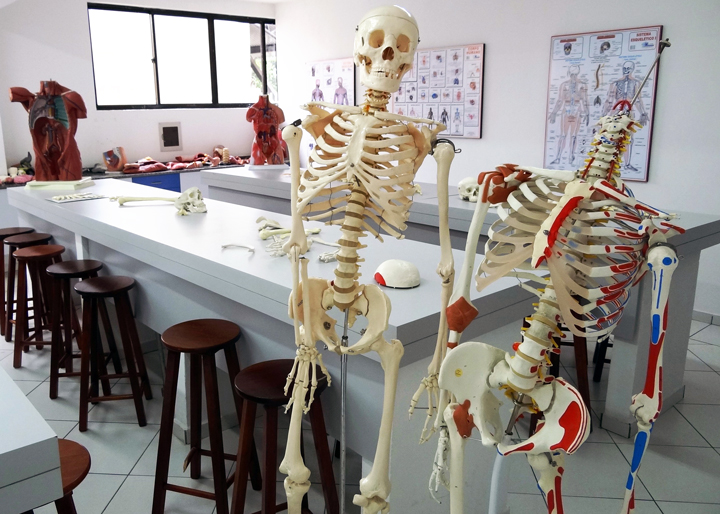 laboratorio-anatomia-unifacear